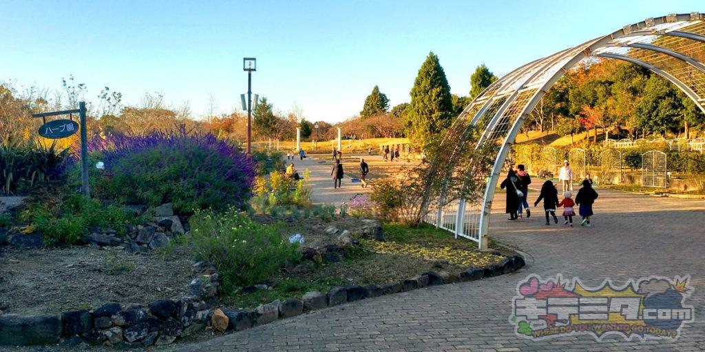 グリーンピア春日井のハーブ園と生け垣