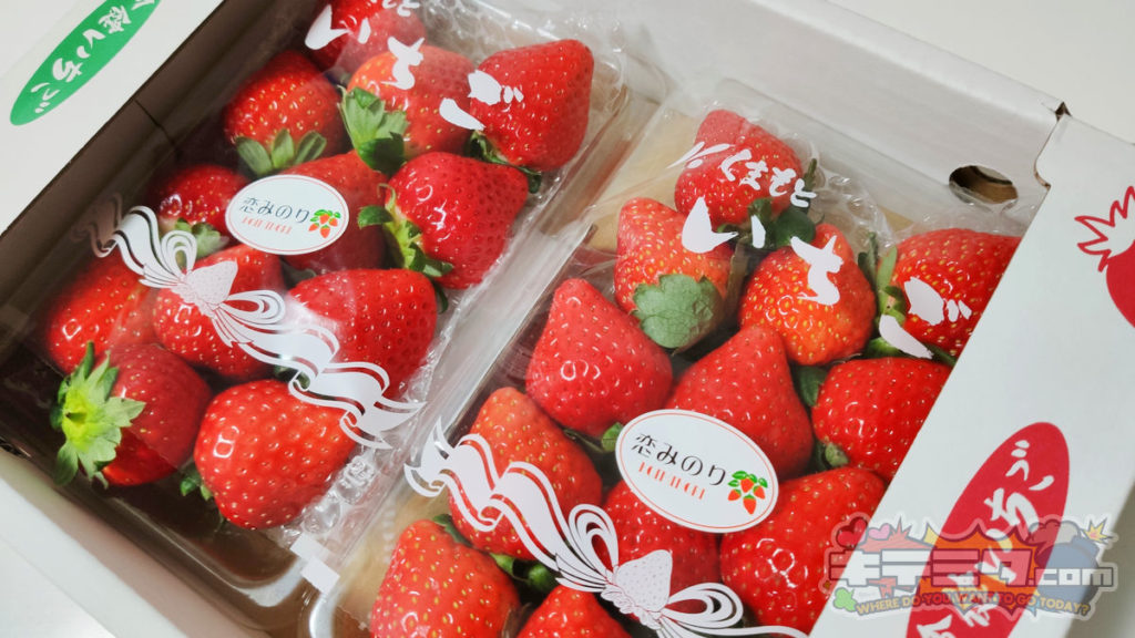 コストコの新製品のいちご、恋みのり2パック