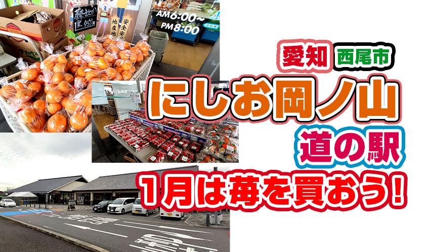 道の駅にしお岡ノ山なら苺がやすいぞ!